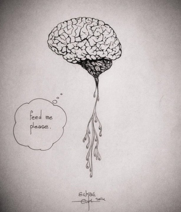 Brain food illustration