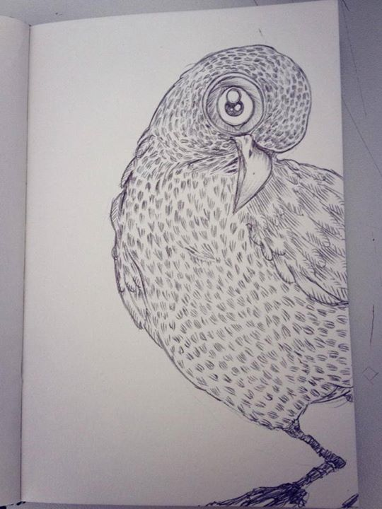Pigeon pen illustration